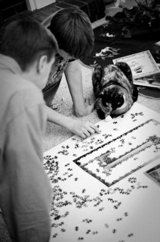 Sadie puzzle2