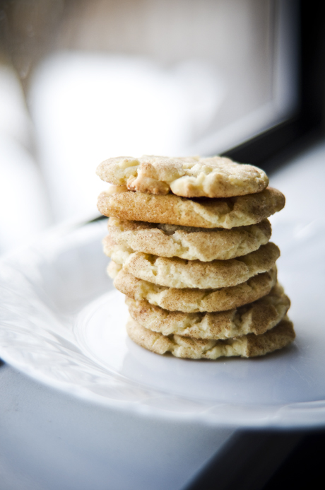 Snickerdoodle stack 2
